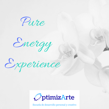 Pure Energy Experience