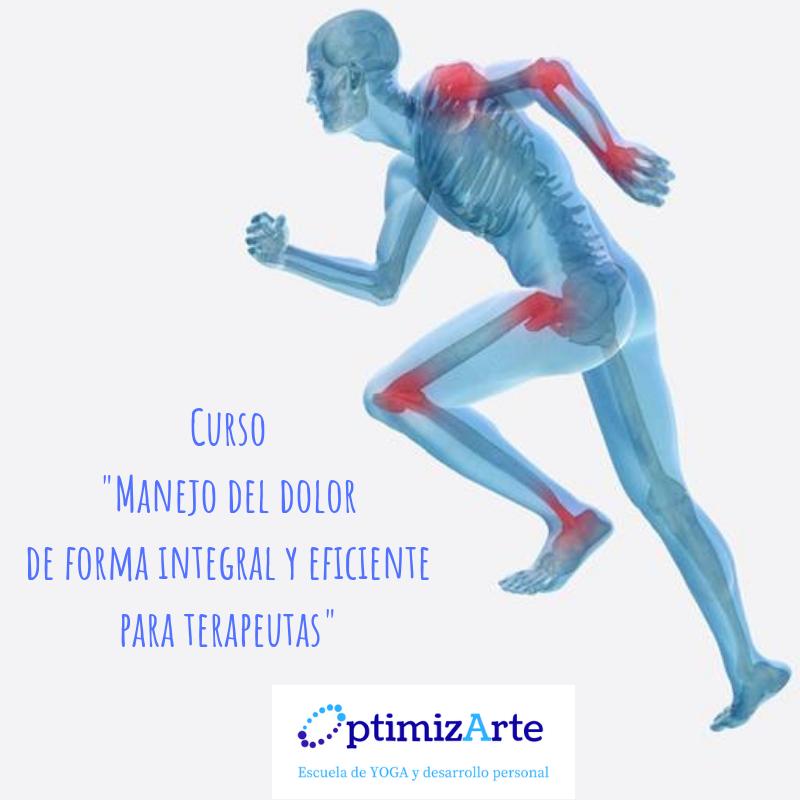 Curso _Manejo del dolor de forma integral y eficiente para terapeutas_.png